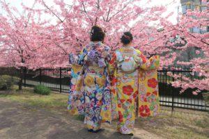 お友達と京都の淀水路の桜と振袖
